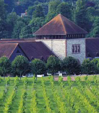 Denbies Vineyard & Winery